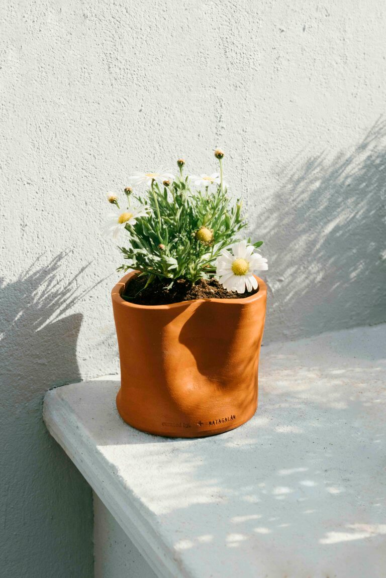 Distorted Plant Pot - curated by.